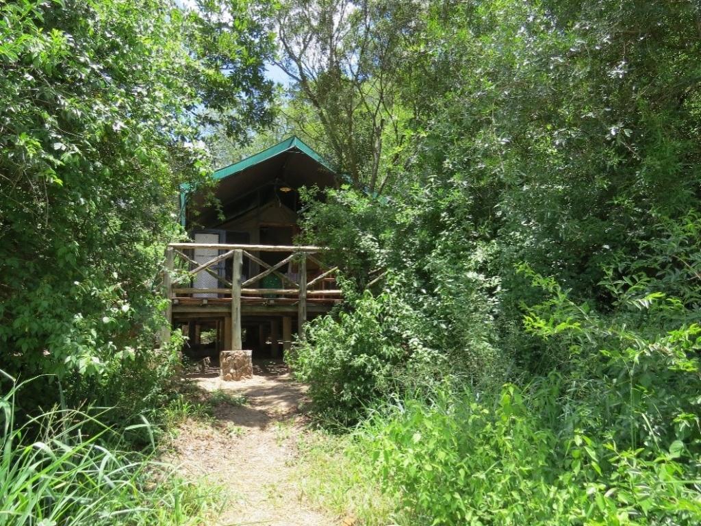 Tamboti Tented Camp Kruger Park