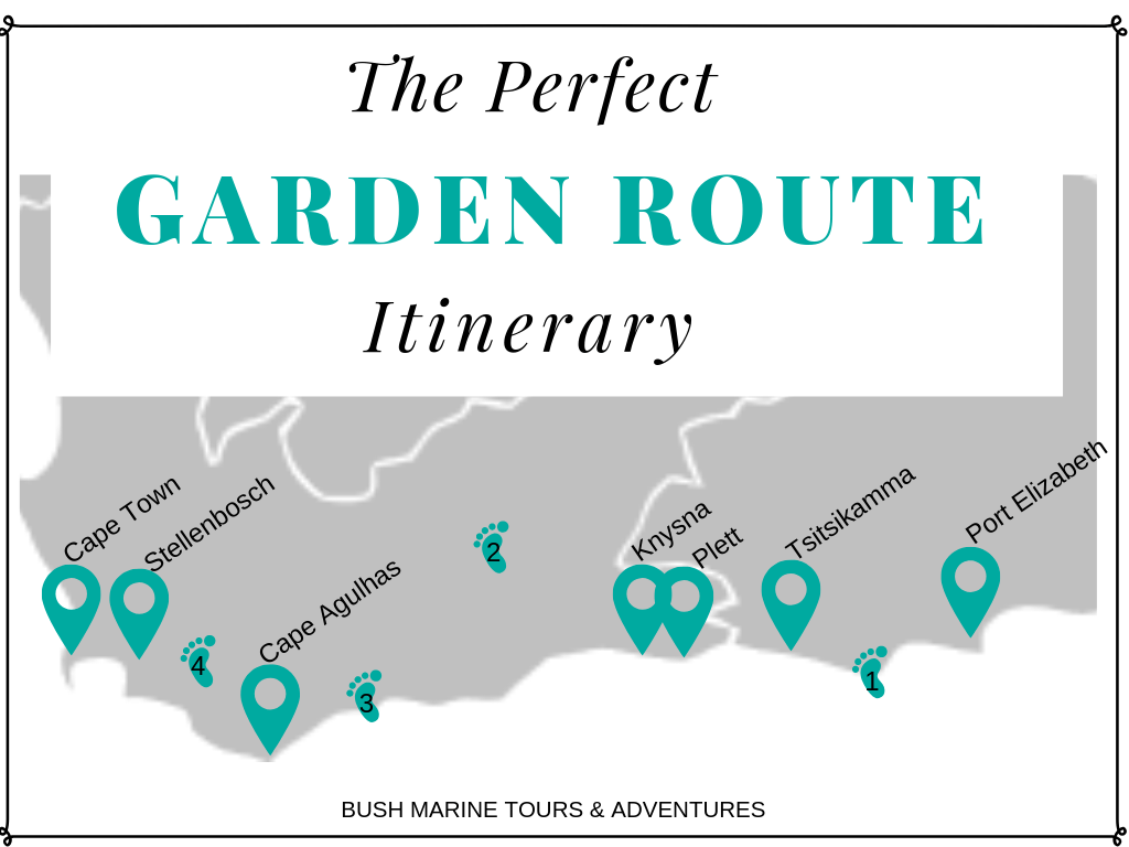 The Perfect Garden Route Itinerary by Bush Marine Tours & Adventures