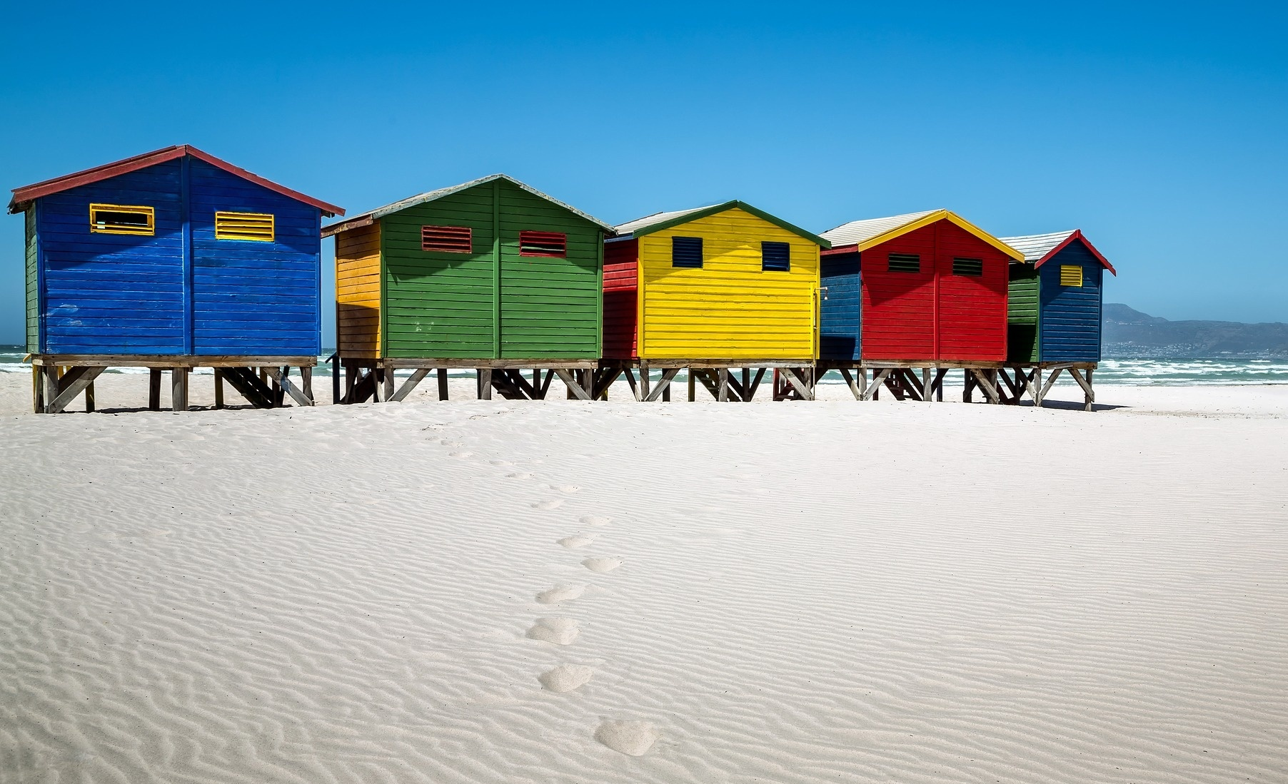 Cape Town and Beyond Bush Marine Tours